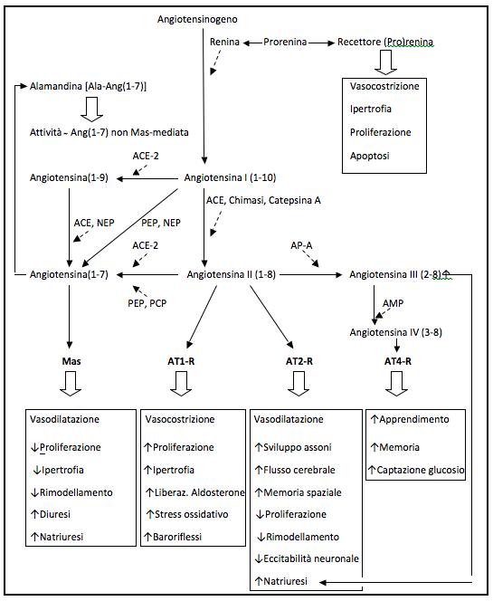 deltasone 5 mg